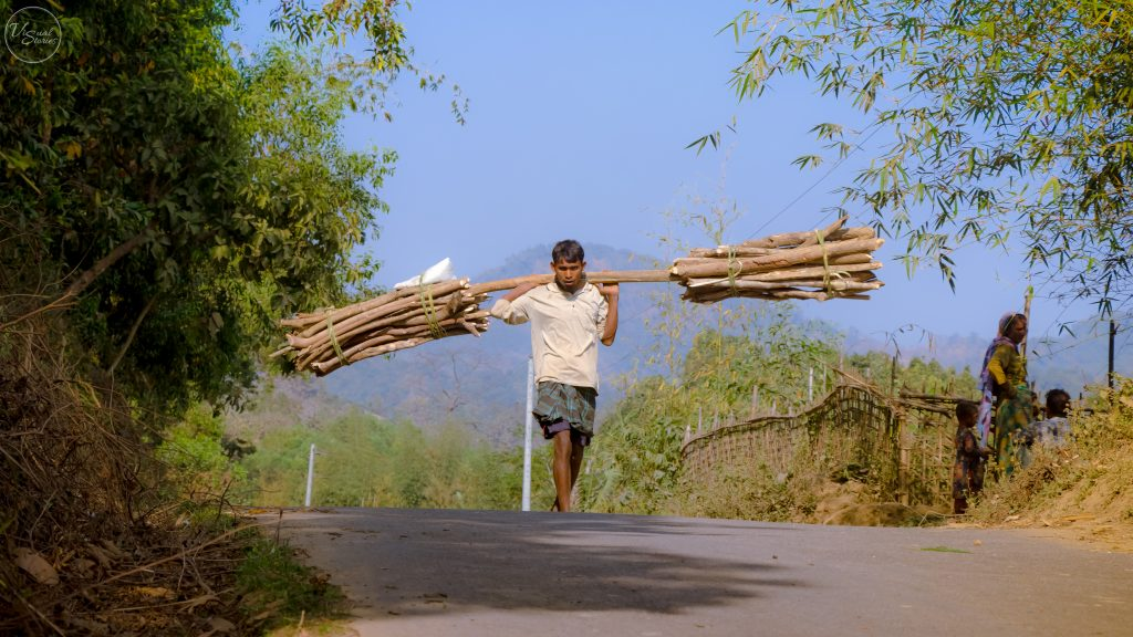 fuelwood collection in hills